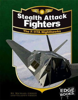 Stealth Attack Fightersstealth
