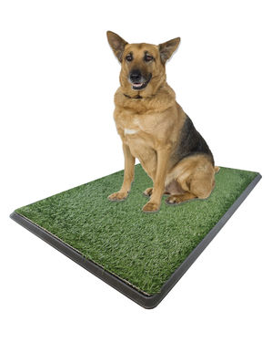 "X-large Pet Grass Potty Patch - Portable Dog Training Bathroom Pad Indoor Or Outdoor Use 30"" X 20"" X 2"""
