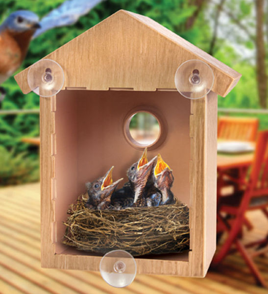 See Through One Way Mirrored Bird House - Suction Cup Window Mounted Bird Nesting Box