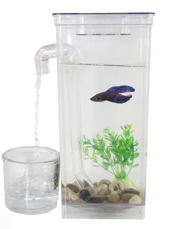 Fun self cleaning fish tank for Fun fish tank