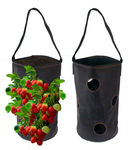 Vertical Garden Hanging Planter 7 Hole Bag for Strawberry & Bare Root Plants Felt Material