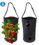 2 Vertical Garden Hanging Planter 7 Hole Bag for Strawberry & Bare Root Plants Felt Material