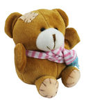 5 Teddy Bear Recordable