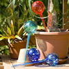 Watering Globes - 4pc Deluxe Set watering globes aqua watering globes watering globe plant waterers water globes
